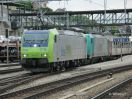 BLS Cargo 485 019-4 in DT mit Leihlok 185 XXX-X in Spiez ausfahrend mit einem HUPAC-Zug Ri Italien